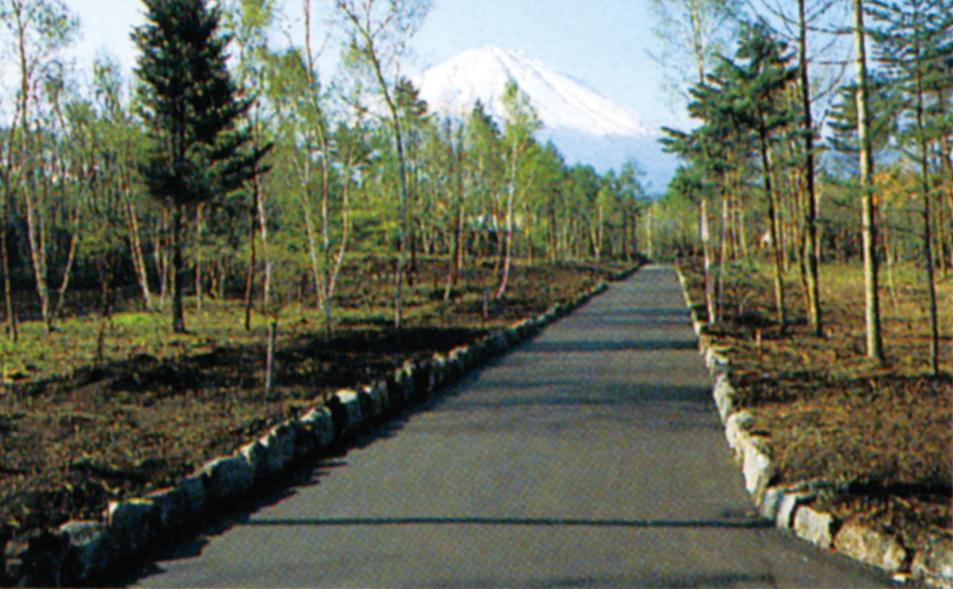 平成7年、分譲を開始した第10次分譲地「白樺の森」