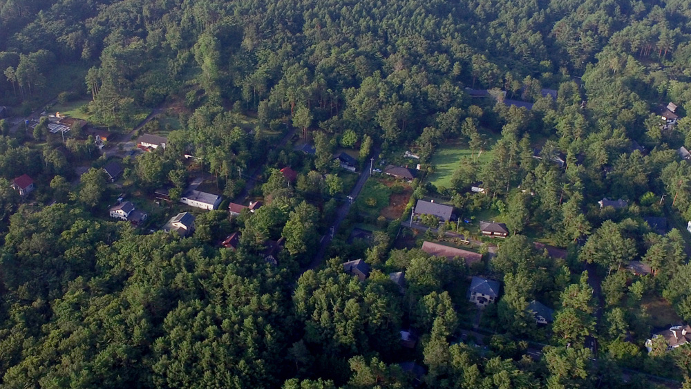 第12次分譲地 3期 悠久の森イメージ