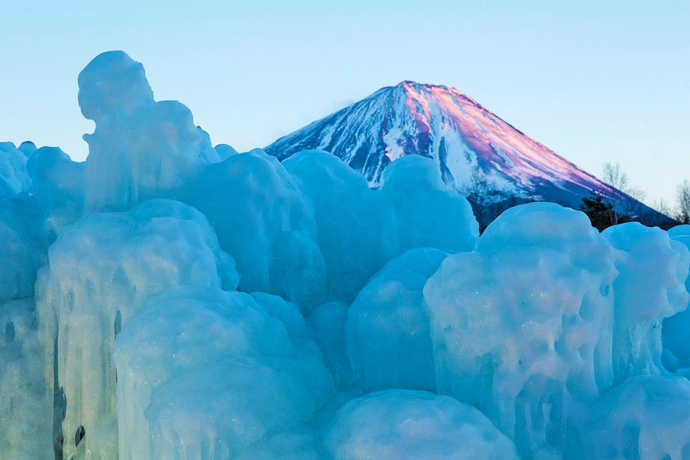 野鳥の森公園樹氷まつり[富士河口湖町]