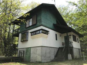 丸紅富士桜53-4号地